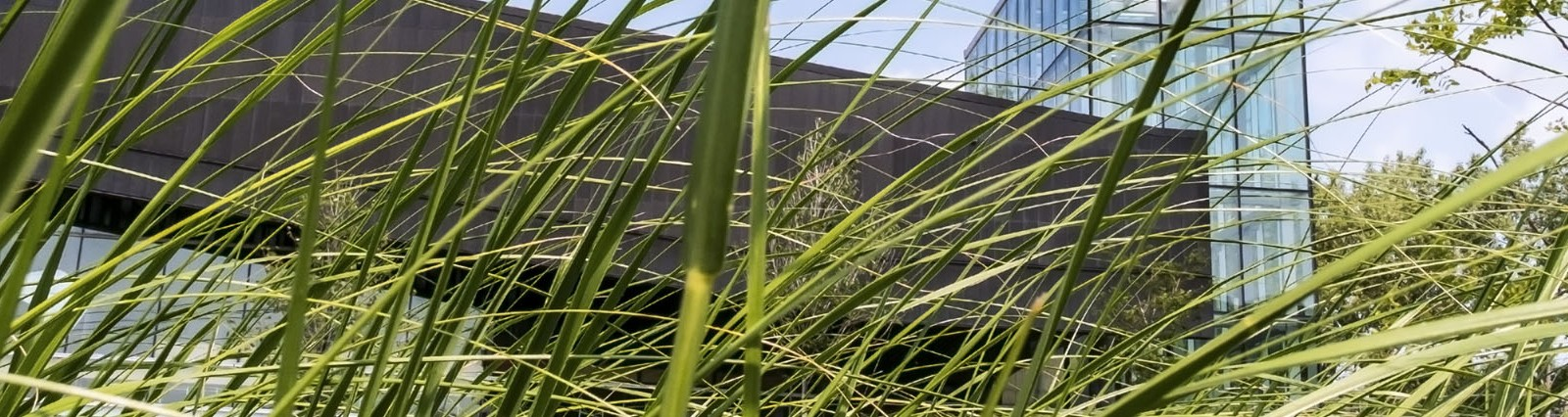 Placi acrilice compozite fabricate sustenabil